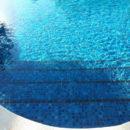 Shark-piscina_real_SQ-02